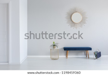 Gold mirror on the wall above blue bench in minimal empty entrance hall interior with plant. Real photo #1198459360