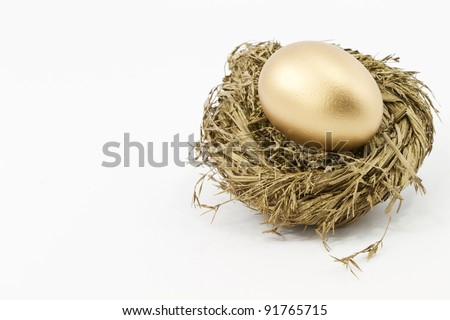 Gold nest egg against white background; horizontal with copy space to left.