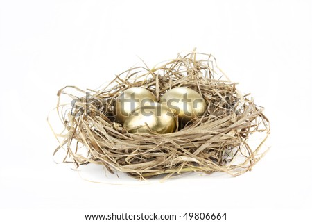 gold nest eggs isolated on a white background