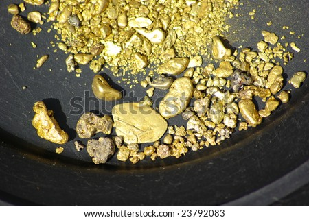 Gold nuggets, flakes and dust mined from the creeks and rivers of california