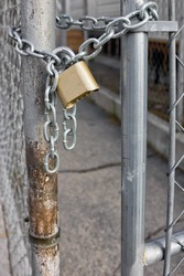 Gold Padlock with chain used on a chainlink fence. Selective focus is use on the padlock.