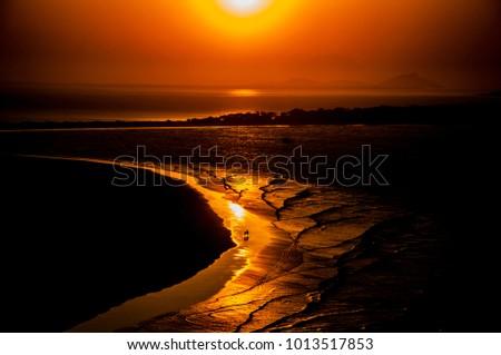 Gold Paths, Honey Island - PR,BR