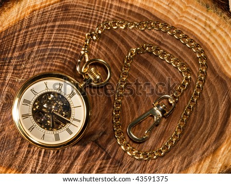 Gold Pocket watch and chain on a cross cut piece Elm tree wood background. Inside gears visible through glass.