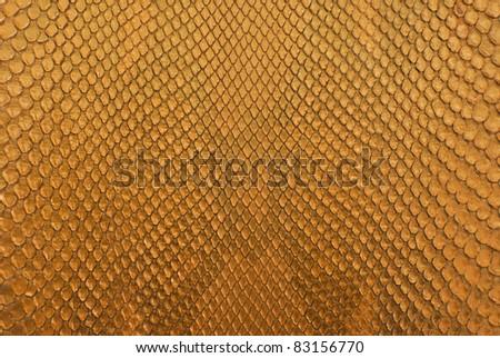 Gold python skin texture background. - stock photo