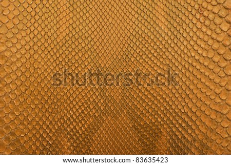 Gold python snake skin texture background.
