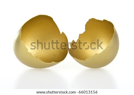 Gold shell of egg on white background.