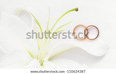 Gold wedding rings near white lily/Wedding rings & Lily/Wedding rings & Lily
