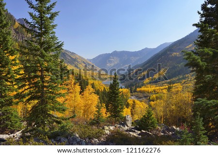 golden and green aspen overlooking Maroon Lake and Elk Mountains in Colorado during fall