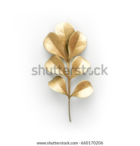 golden and green leaf design elements. Decoration elements for invitation, wedding cards, valentines day, greeting cards. Isolated on white background. #660170206