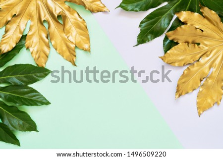 Golden and green tropical leaves on colorful backdrop. Minimal autumn exotic concept with copy space. Copy space, top view.