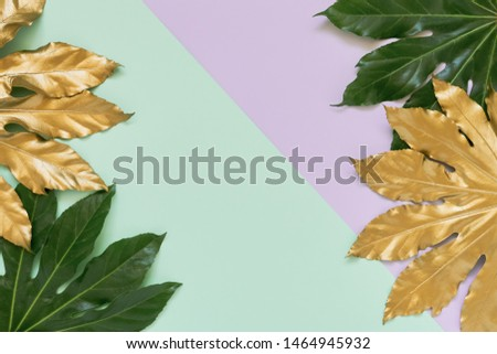 Golden and green tropical leaves on colorful backdrop. Minimal summer exotic concept with copy space. Copy space, top view.