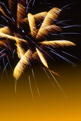 golden and purple rays of festive fireworks on the night sky. Cover. Festive background. Slide. Photographic film.