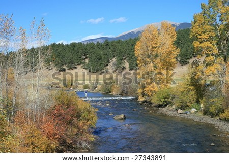 Golden Aspens in the Rocky Mountains of Colorado, with fresh water stream and dam