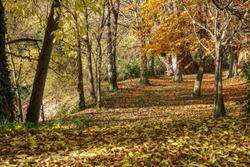 Golden autumn in Monasterio de piedra/Stone Monastery - huge park with waterfalls in Nuevalos, Spain