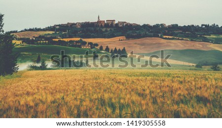 Golden autumn in Tuscany. Italy. Tuscany landscape. Europa. Honeymoon trip, tourist, Europe tourism or holiday vacation travel concept. Vintage tone filter effect with noise and grain. #1419305558