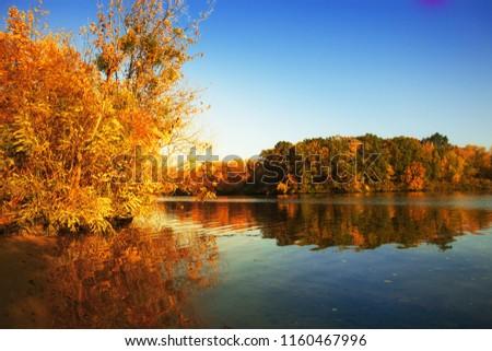 Golden autumn trees and lake. Autumn landscape, sunny evening.