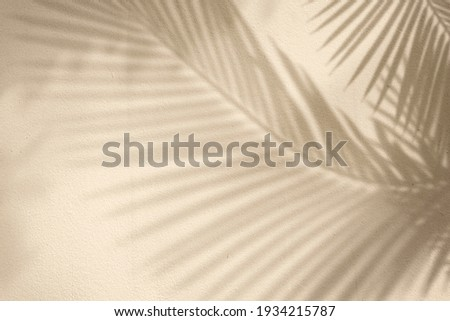 Golden background with palm tree Stockfoto ©