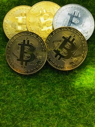 Golden bitcoin coin. Crypto currency golden coin bitcoin symbol on green grass background. Concept for trade and investment