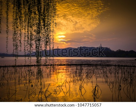 Golden clouds over lake with mountain in distance. Silhouette of dead lotus stems and willow tree branches against sunset. West Lake, City of Hangzhou, China. #1047715057