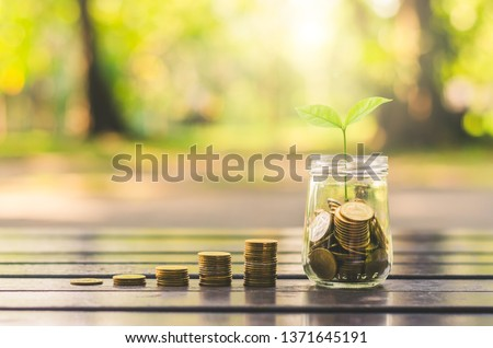 golden coins stack with beautiful coin to jar on wood table with blur nature bokeh background in park. financial saving marketing concept. ESG Environmental Social Governance. startup.