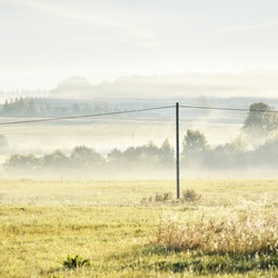 Golden country field and deciduous forest in a clouds of morning fog at sunrise. Tree silhouettes in the background. Transformer pole, cable close-up. Electricity line, energy, environmental damage