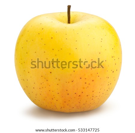 golden delicious apples isolated