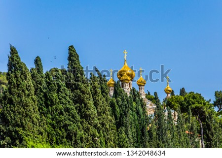 Golden domes Church of St. Mary Magdalen in Gethsemane. Russian Orthodox Church in East Jerusalem. Cypress Alley. The concept of historical, religious and ethnographic tourism