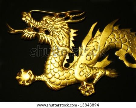 Golden Dragon Head on Black Background