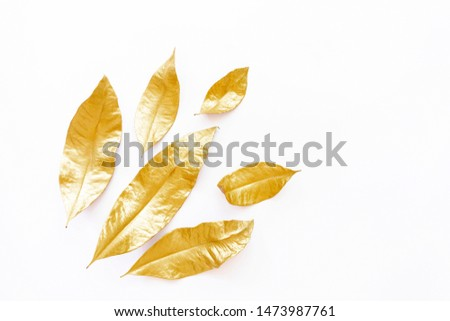Golden dry leaves isolated on white background. Flat lay, top view minimal concept. Copy space. Autumn fall vibes. Christmas decor design element. Botany herbarium #1473987761