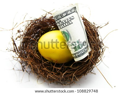 golden egg and cash in a nest, on white