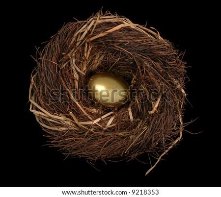 Golden egg in a bird's nest on a black background