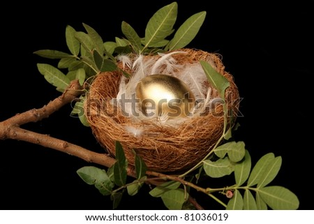 Golden egg in a nest with white feathers - conceptual