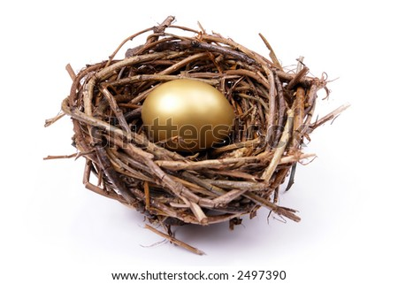 Golden egg in bird's nest over white background