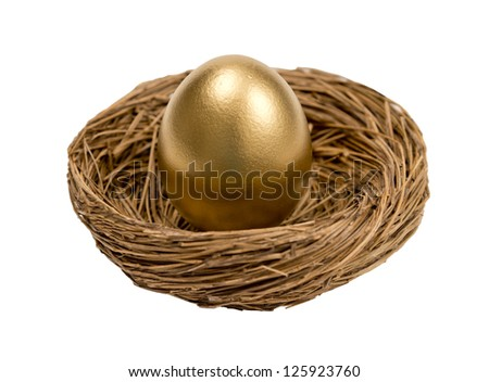 Golden Egg In Nest Isolated On White Background