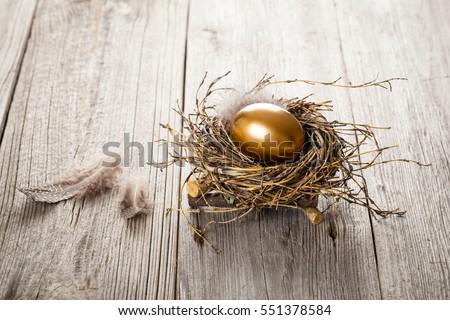 Golden egg in nest on dark vintage wooden background