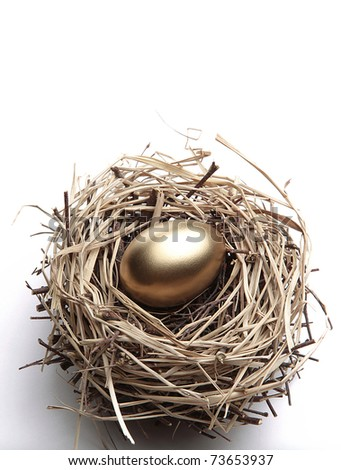 Golden Egg in the Nest - stock photo