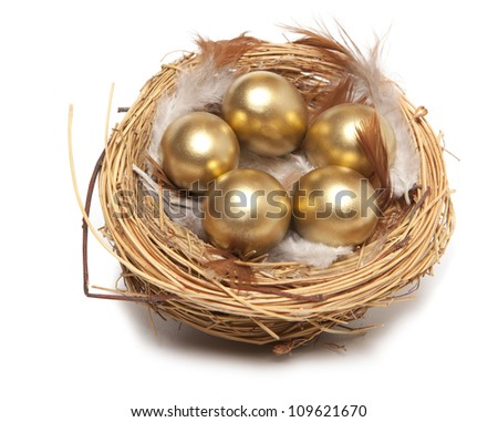 Golden egg in the nest isolated