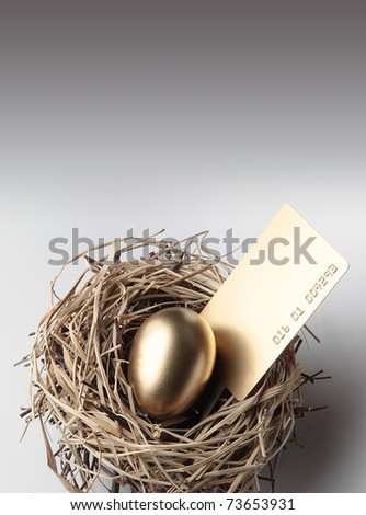 Golden Egg in the Nest with Credit Card