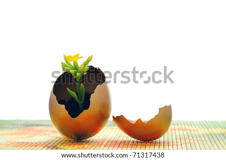 Golden egg, new life concept and easter time