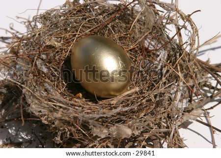 golden eggs in a bird nest representing finincial freedom and security in the image of a Nest Egg