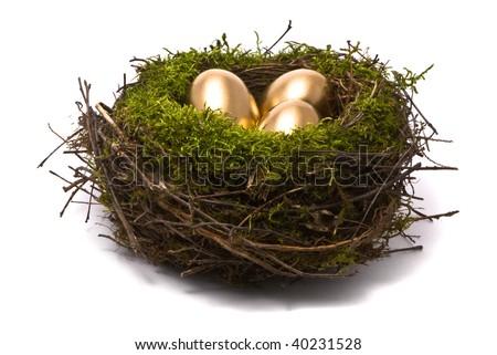 Golden eggs in a nest