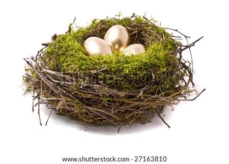 Golden eggs on a nest