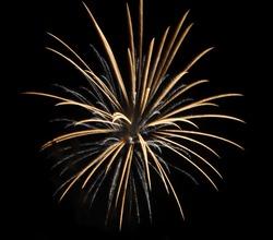 Golden firework in the new year festival.