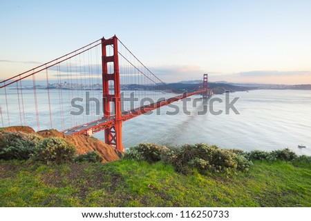 Golden Gate Bridge in clear blue sky with green grass as foreground. San Francisco, USA.