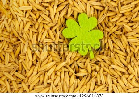 golden grain many basis clover green brewing basis design. Design basis brewing st patricks day