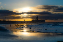 Golden hour belgium coastline with sea gulls and the sun and the silhoutte of city Ostend.  Coastline bredene of the north sea with sunset.  Beautifull belgium toerism,  wallpaper of flanders, yellow