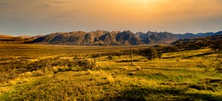 Golden hour sunset perfection in the ancient glacial valley in Hakatere conservation park, Ashburton Lakes, surrounded by the Southern Alps