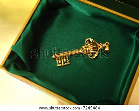 Golden key on green box