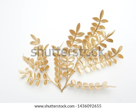 golden leaf design elements. Decoration elements for invitation, wedding cards, valentines day, greeting cards. Christmas decor Isolated on white background.                                #1436092655