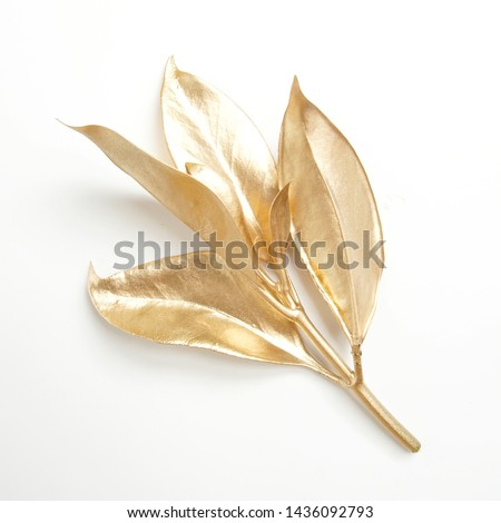 golden leaf design elements. Decoration elements for invitation, wedding cards, valentines day, greeting cards. Christmas decor Isolated on white background.                                #1436092793